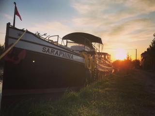 Saraphina photo 3