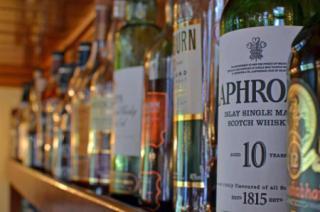 Scottish Highlander photo 7