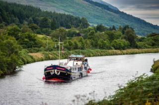 Scottish Highlander photo 2