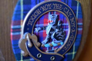 Scottish Highlander photo 15