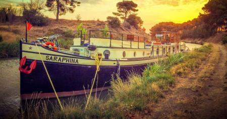 Photo of Saraphina