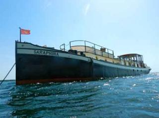 Saraphina